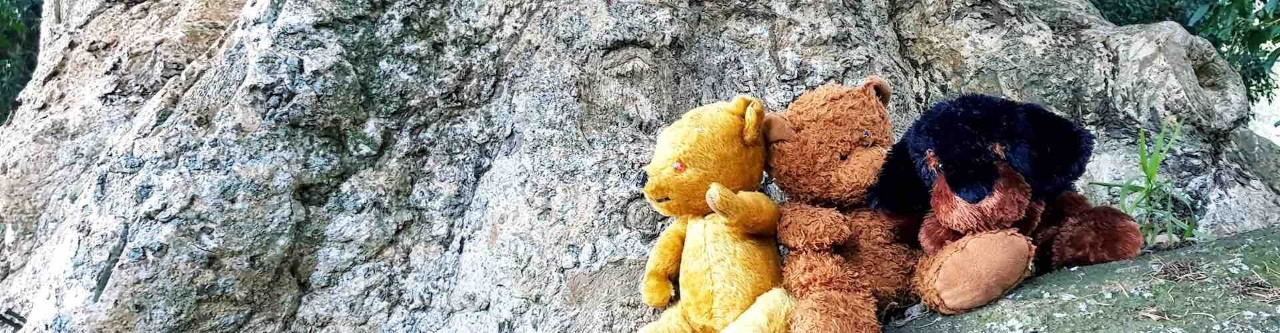 three teddy bears perched on a rock with a huge tree trunk behind