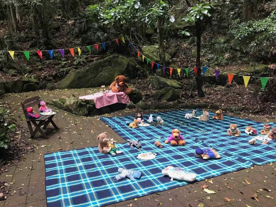 picnic rugs with teddy bears arranged on a paved area surrounded by rainforest and large mossy rocks