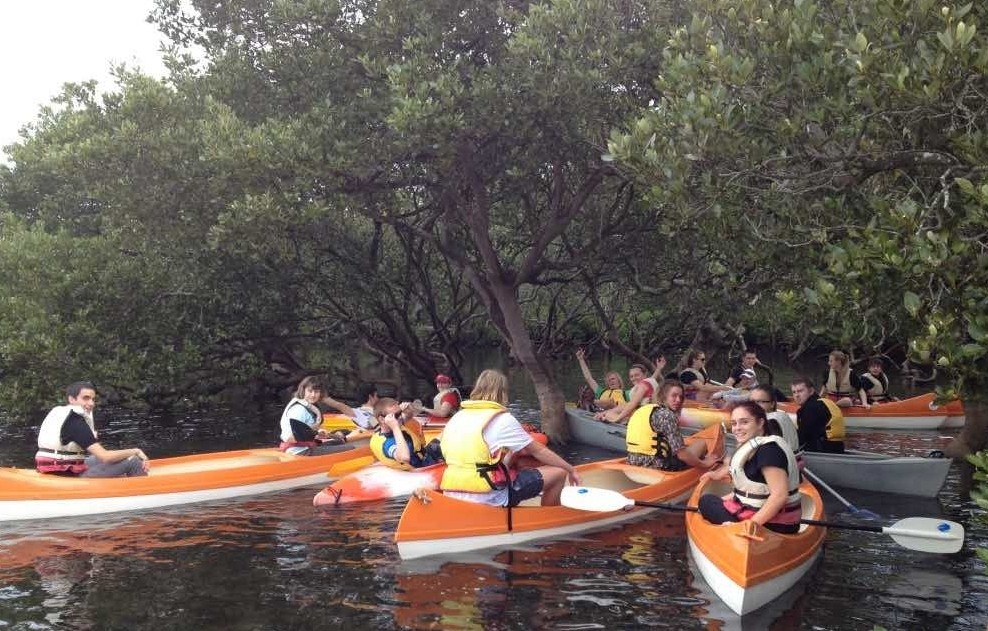 students in orange canoes amongst mature grey mangroves at high tide